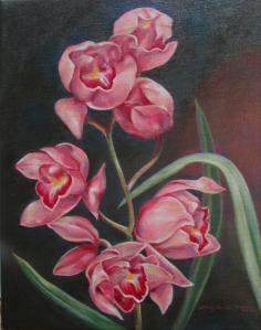 Loleta Orchids