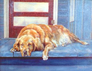 A portrait of our dog,  Mandy, on our back porch